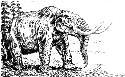 Open Mammoths