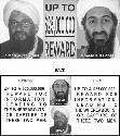 Open Qaida (Organization)