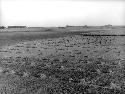 Open Dust Bowl